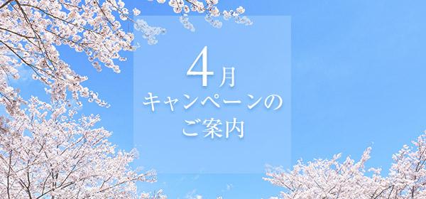 4月・5月キャンペーンご案内♪